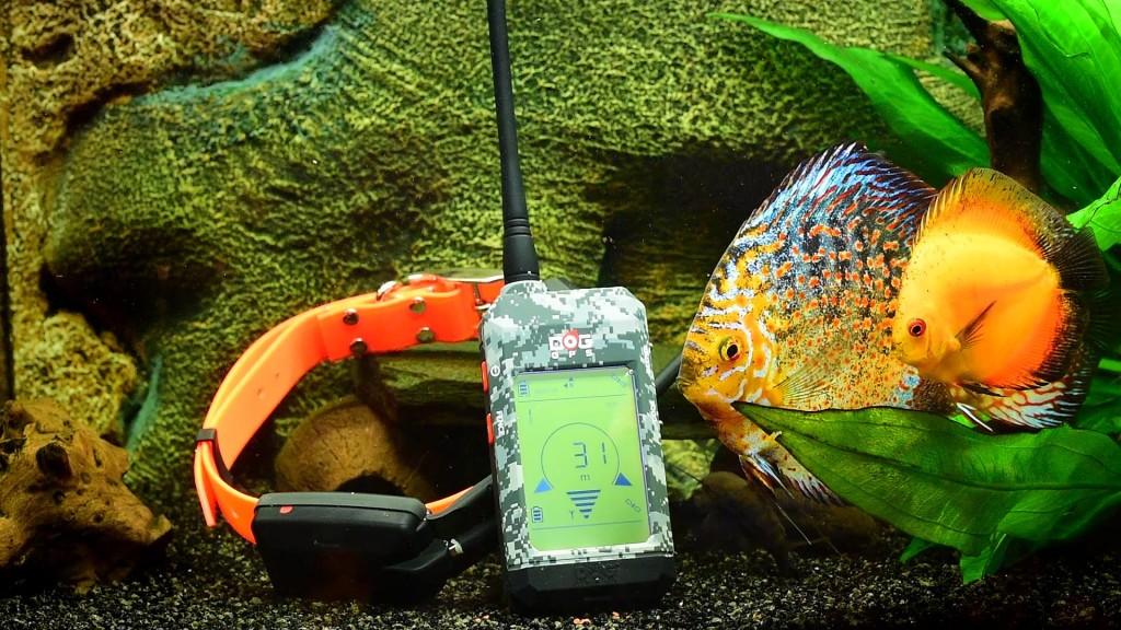 Test vodotěsnosti Dog GPS X20