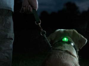 Bezpečnostní světlo pro psa - Sportdog