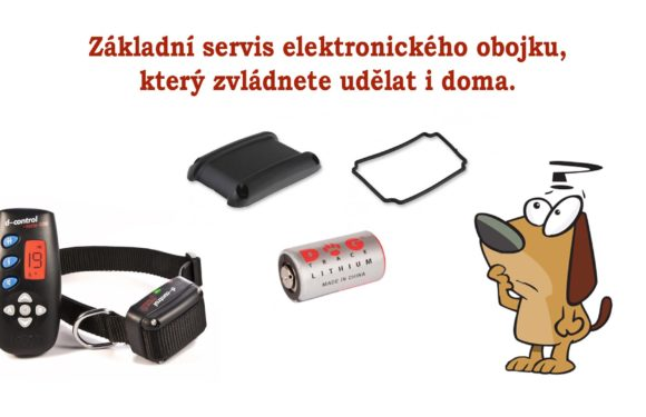 Základní servisní úkony elektronického obojku