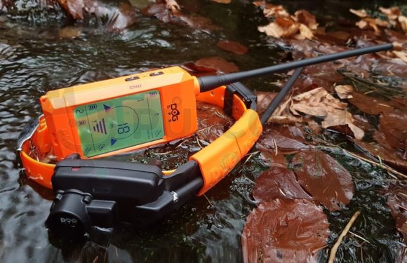 DOG GPS X30TB chystaná novinka pro rok 2020