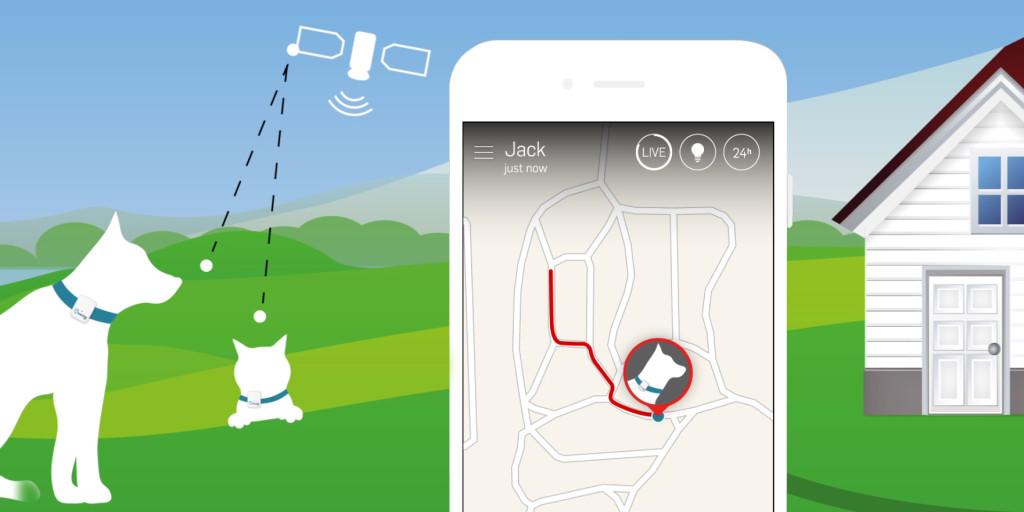 GPS vyhledávání psa